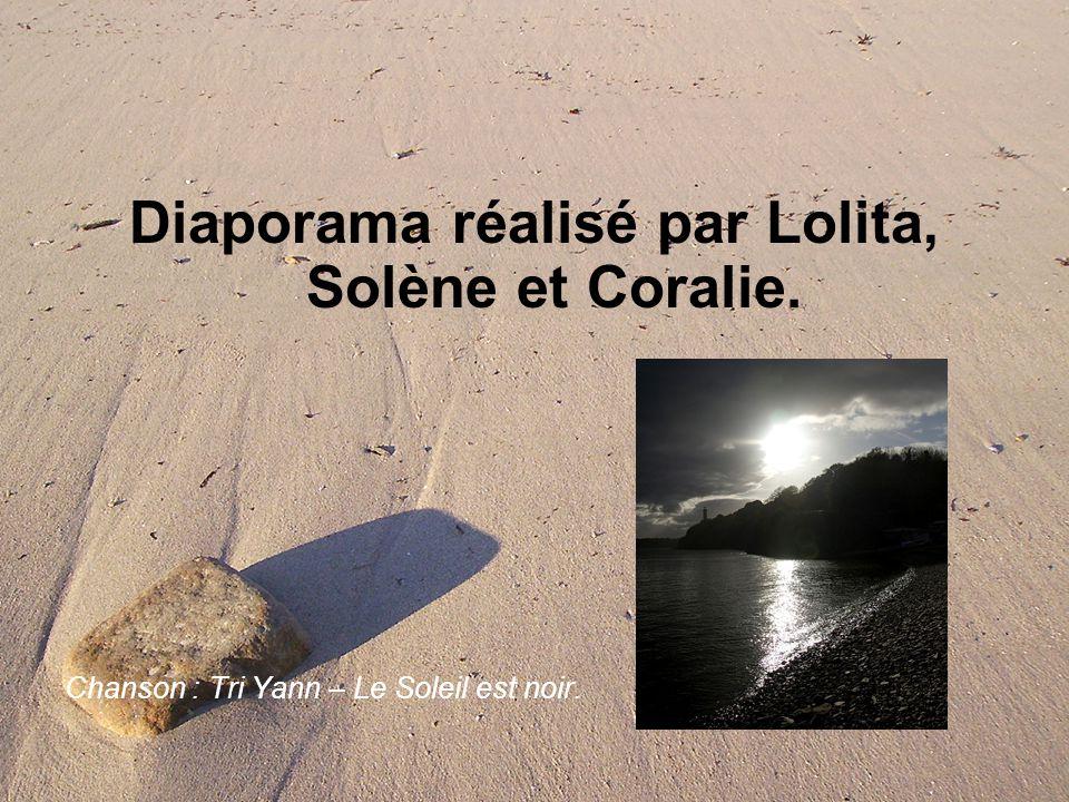 Diaporama réalisé par Lolita, Solène et Coralie. Chanson : Tri Yann – Le Soleil est noir.