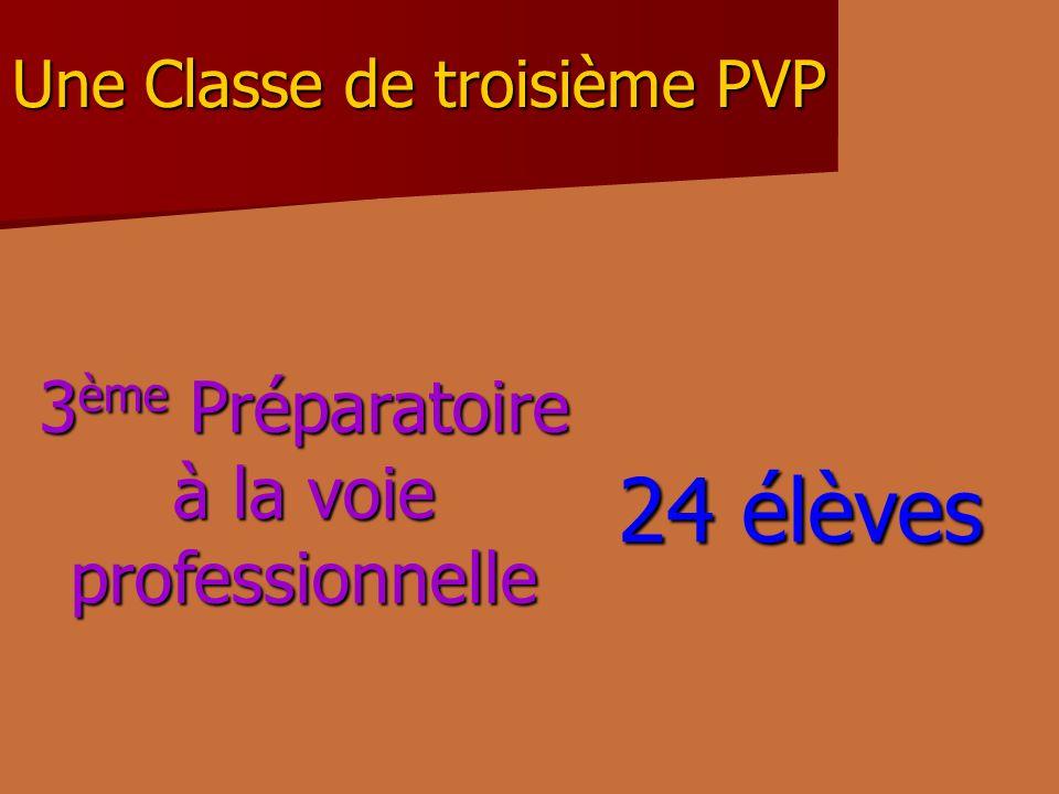 Une Classe de troisième PVP 3 ème Préparatoire à la voie professionnelle 24 élèves