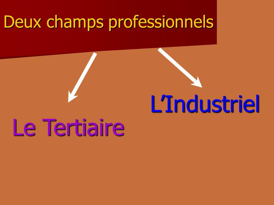 Deux champs professionnels Le Tertiaire LIndustriel