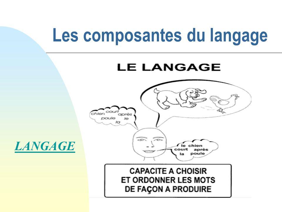 Les composantes du langage LANGAGE