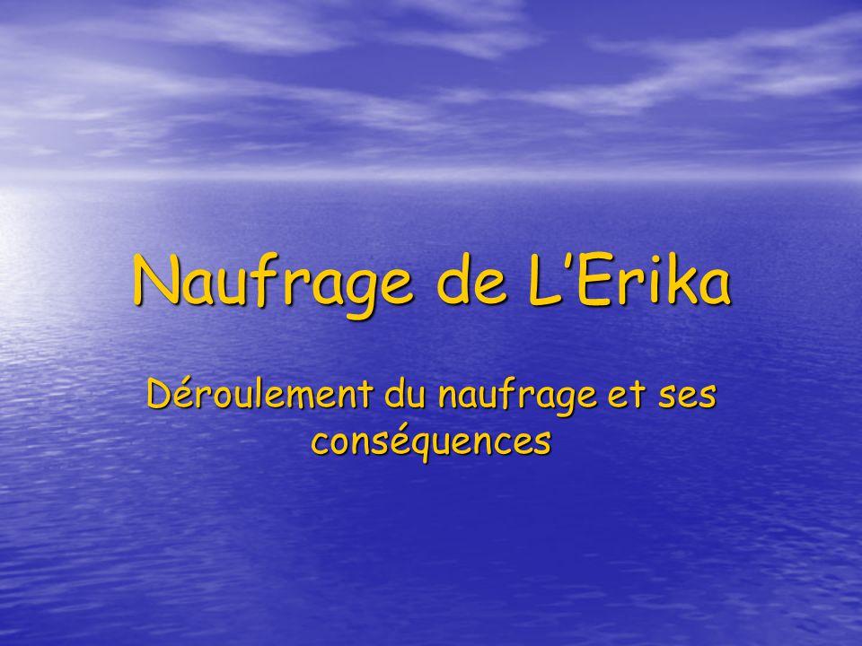Naufrage de LErika Déroulement du naufrage et ses conséquences