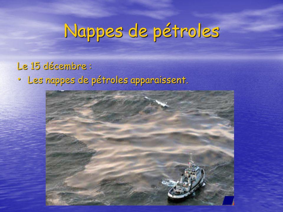 Nappes de pétroles Le 15 décembre : Les nappes de pétroles apparaissent.