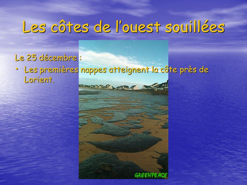 Les côtes de louest souillées Le 25 décembre : Les premières nappes atteignent la côte près de Lorient.