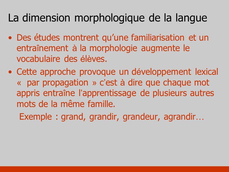 La dimension morphologique de la langue Des études montrent quune familiarisation et un entra î nement à la morphologie augmente le vocabulaire des é
