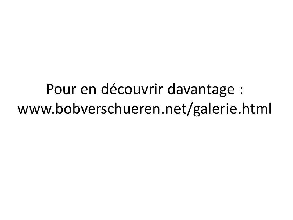 Pour en découvrir davantage : www.bobverschueren.net/galerie.html