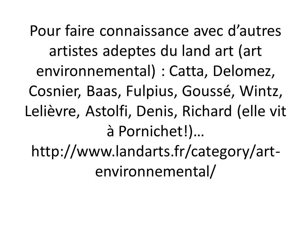 Pour faire connaissance avec dautres artistes adeptes du land art (art environnemental) : Catta, Delomez, Cosnier, Baas, Fulpius, Goussé, Wintz, Leliè