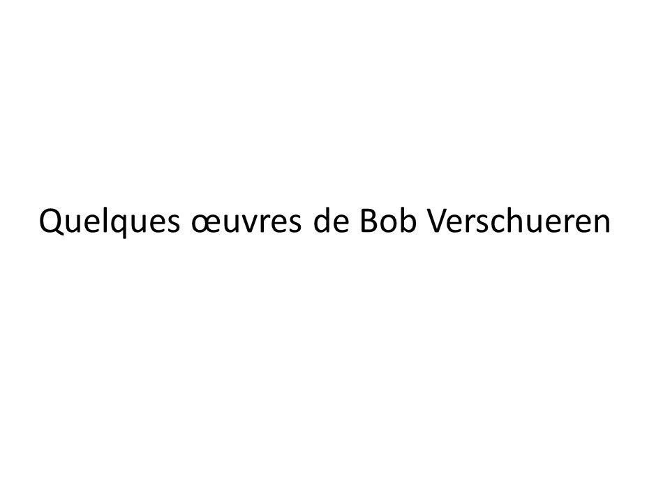 Quelques œuvres de Bob Verschueren