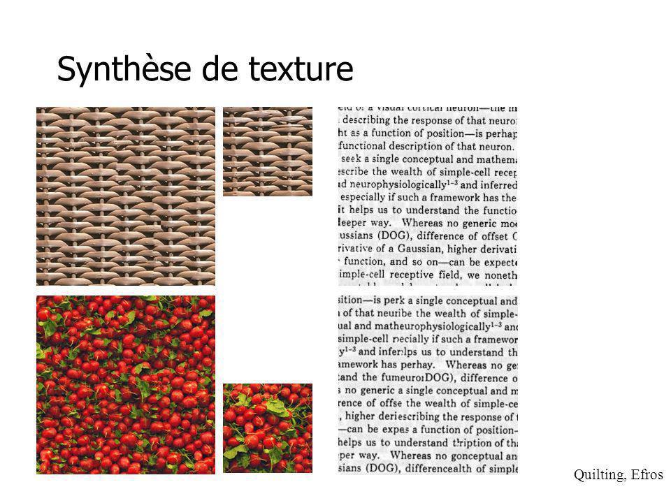 Synthèse de texture Quilting, Efros