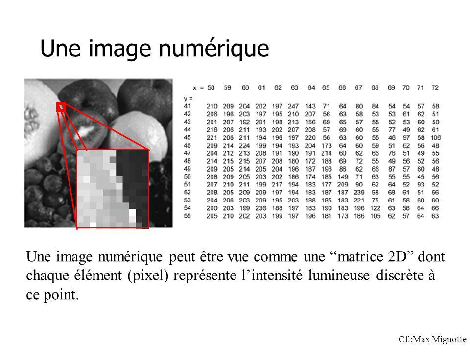 Une image numérique Une image numérique peut être vue comme une matrice 2D dont chaque élément (pixel) représente lintensité lumineuse discrète à ce point.