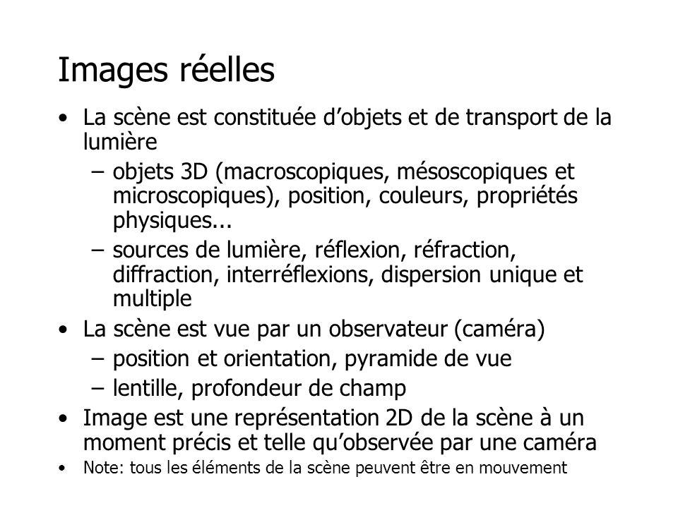 Images réelles La scène est constituée dobjets et de transport de la lumière –objets 3D (macroscopiques, mésoscopiques et microscopiques), position, couleurs, propriétés physiques...