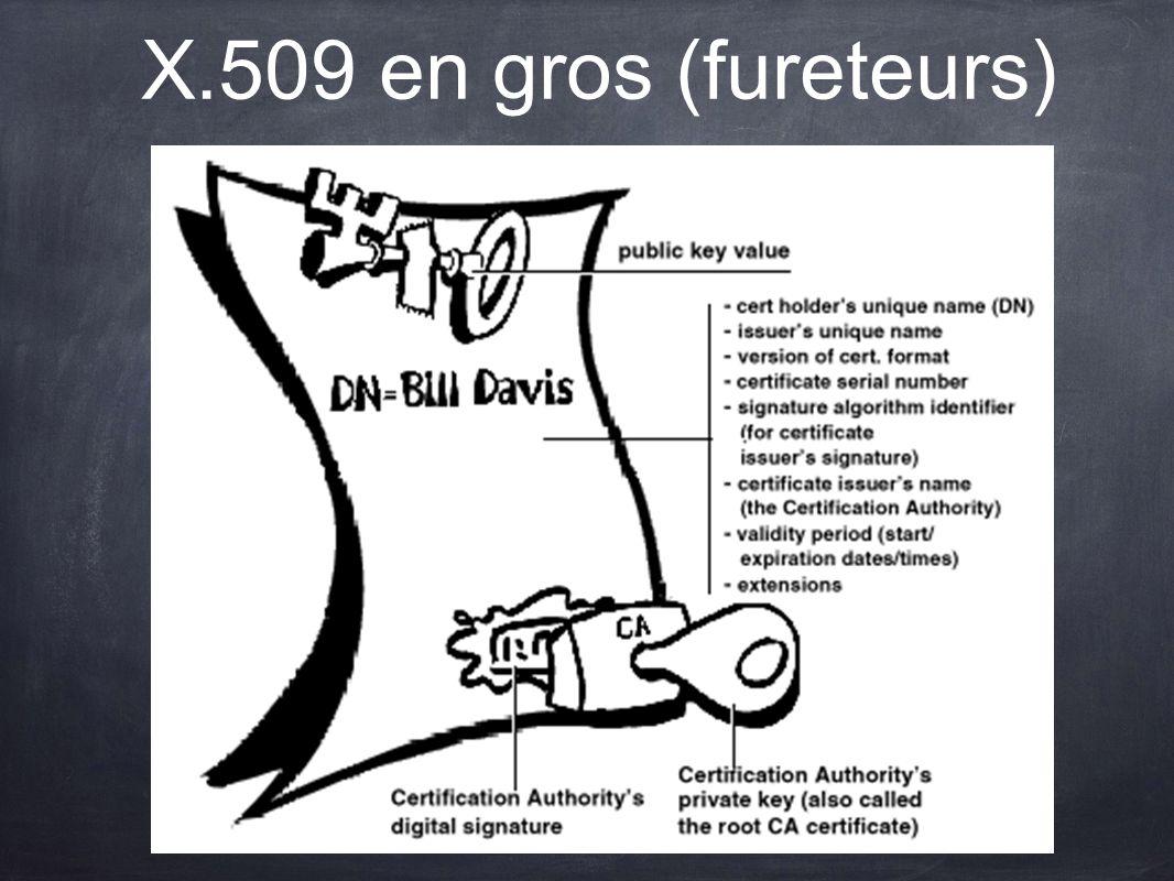 X.509 en gros (fureteurs)