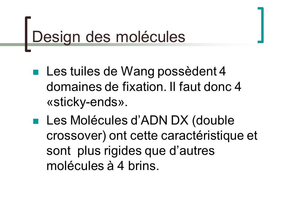 Design des molécules Les tuiles de Wang possèdent 4 domaines de fixation.