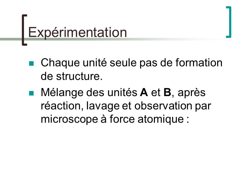 Expérimentation Chaque unité seule pas de formation de structure.