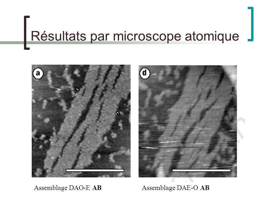 Résultats par microscope atomique Assemblage DAO-E ABAssemblage DAE-O AB