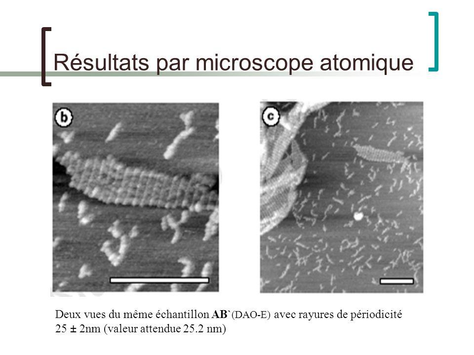 Résultats par microscope atomique Deux vues du même échantillon AB` (DAO-E) avec rayures de périodicité 25 ± 2nm (valeur attendue 25.2 nm)