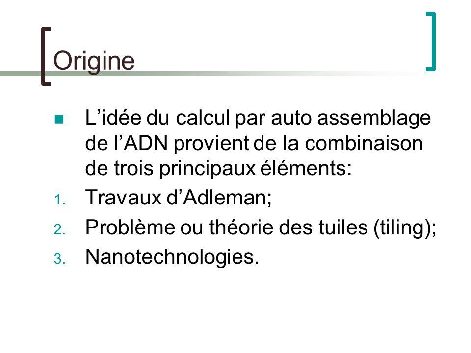 Origine Lidée du calcul par auto assemblage de lADN provient de la combinaison de trois principaux éléments: 1.