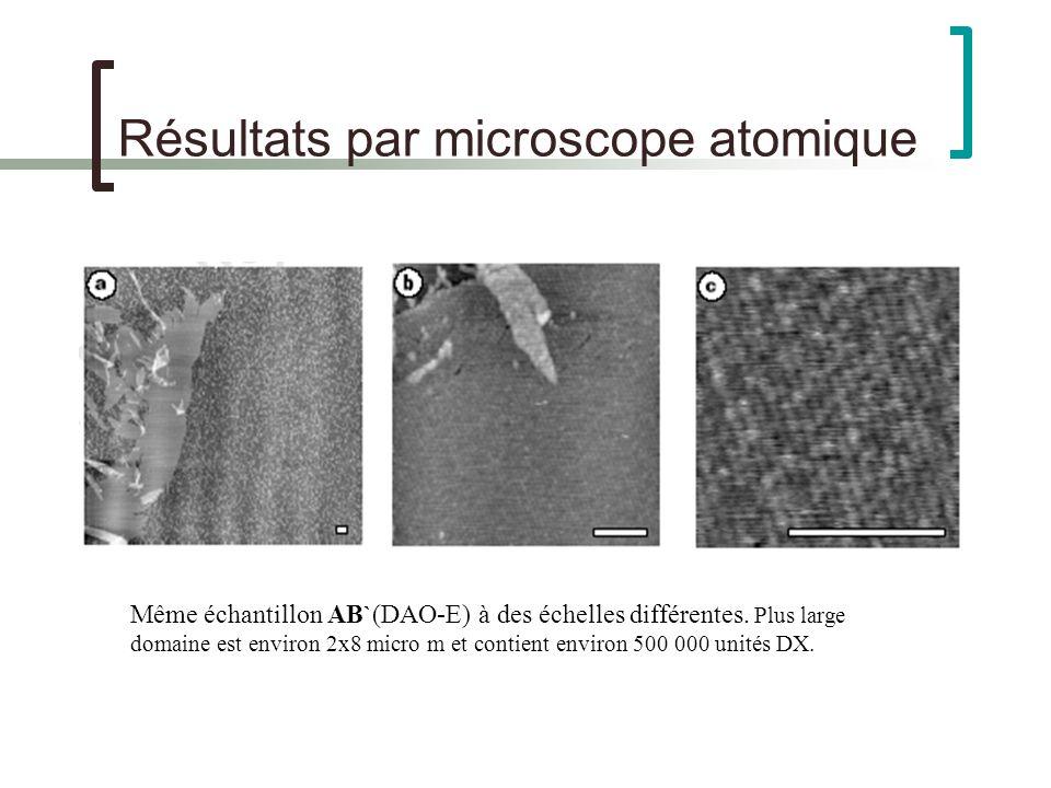 Résultats par microscope atomique Même échantillon AB`(DAO-E) à des échelles différentes.