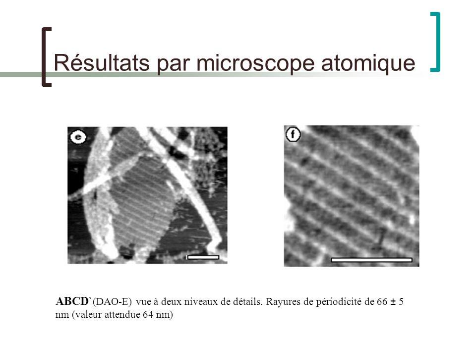 Résultats par microscope atomique ABCD` (DAO-E) vue à deux niveaux de détails.