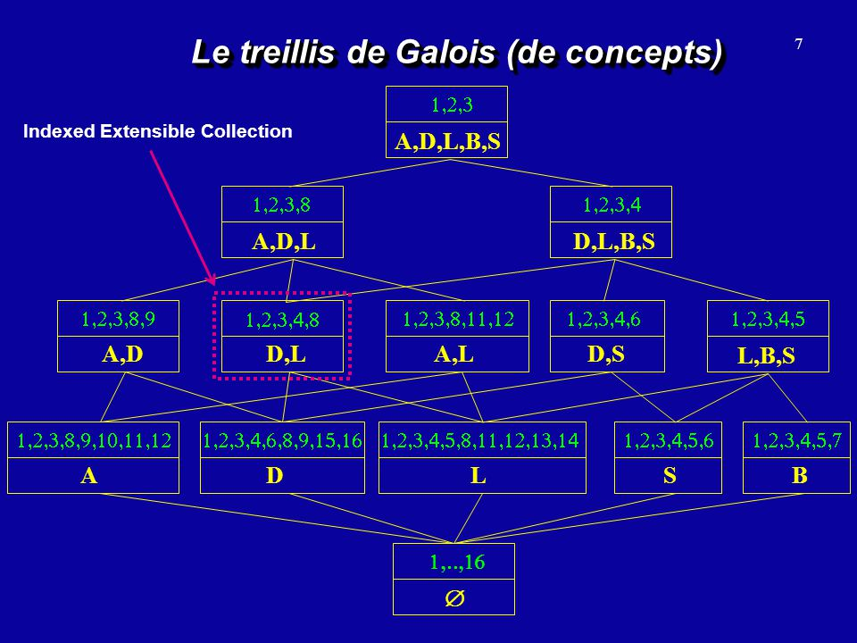 7 Le treillis de Galois (de concepts) D A L S B A,D D,L A,L D,S L,B,S D,L,B,S A,D,L A,D,L,B,S Indexed Extensible Collection
