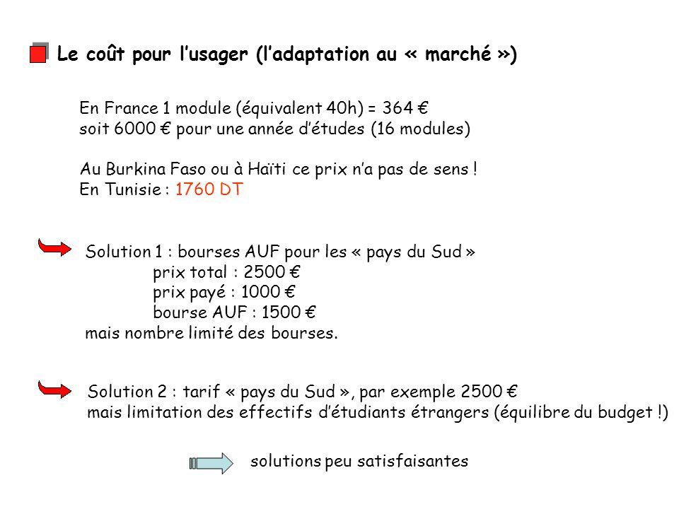 Le coût pour lusager (ladaptation au « marché ») En France 1 module (équivalent 40h) = 364 soit 6000 pour une année détudes (16 modules) Au Burkina Faso ou à Haïti ce prix na pas de sens .