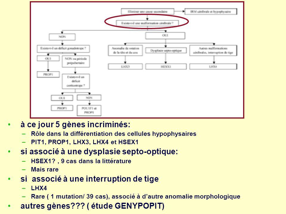 à ce jour 5 gènes incriminés: –Rôle dans la différentiation des cellules hypophysaires –PIT1, PROP1, LHX3, LHX4 et HSEX1 si associé à une dysplasie se