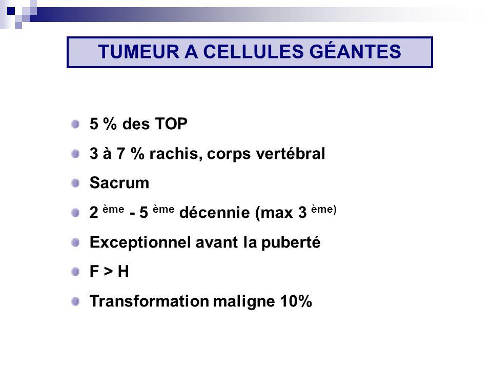 TUMEUR A CELLULES GÉANTES 5 % des TOP 3 à 7 % rachis, corps vertébral Sacrum 2 ème - 5 ème décennie (max 3 ème) Exceptionnel avant la puberté F > H Transformation maligne 10%