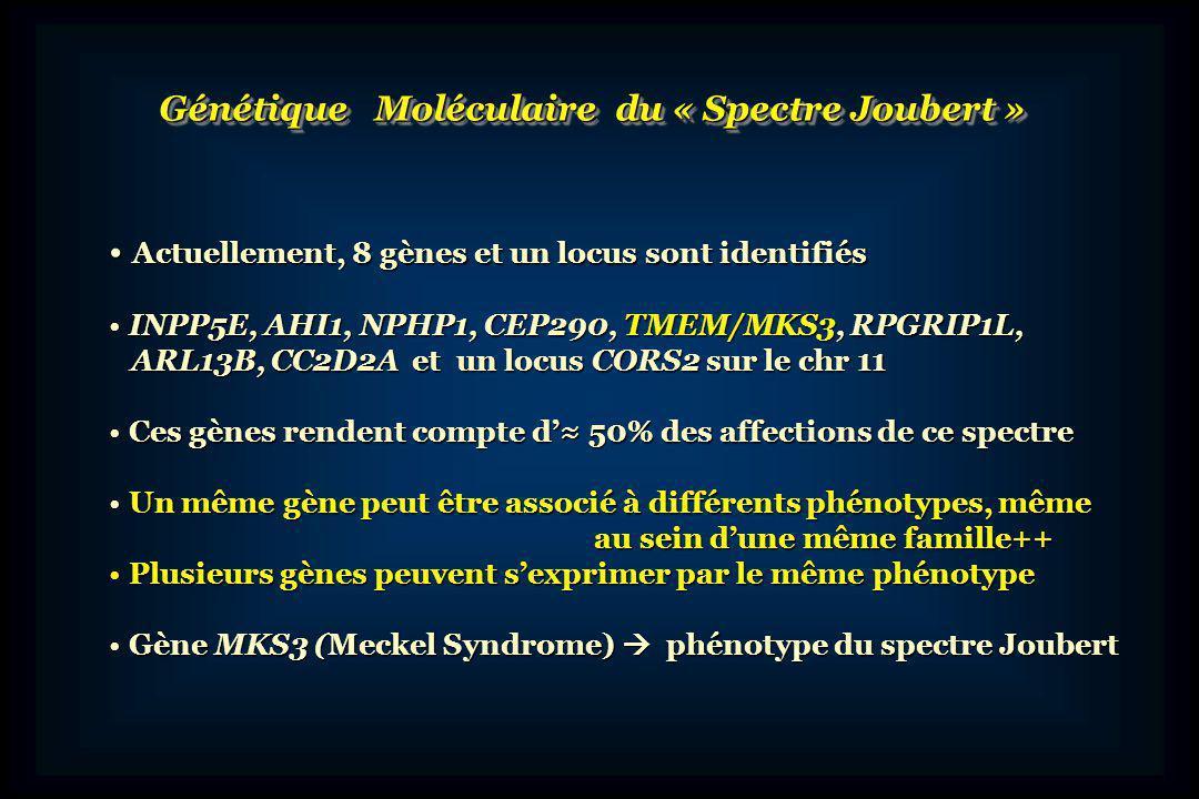 Affections du Spectre Joubert : « Ciliopathies » Produit de ces gènes : dans les cils primaires et le centrosome Produit de ces gènes : dans les cils primaires et le centrosome Rôle dans la structure, la fonction et la stabilité de ces structures Rôle dans la structure, la fonction et la stabilité de ces structures Localisation ubiquitaire dans presque toutes les cellules Localisation ubiquitaire dans presque toutes les cellules Multiplicité des signes cliniques et variété des phénotypes++ Multiplicité des signes cliniques et variété des phénotypes++ « Overlap » des phénotypes avec ceux dautres « ciliopathies » « Overlap » des phénotypes avec ceux dautres « ciliopathies » tels les syndromes de Meckel ou de Bardet-Biedl tels les syndromes de Meckel ou de Bardet-Biedl