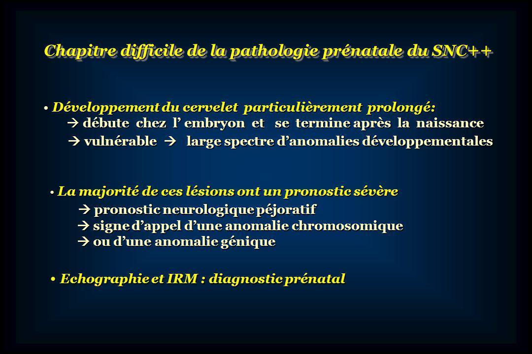 Rappel anatomique et embryologique Rappel