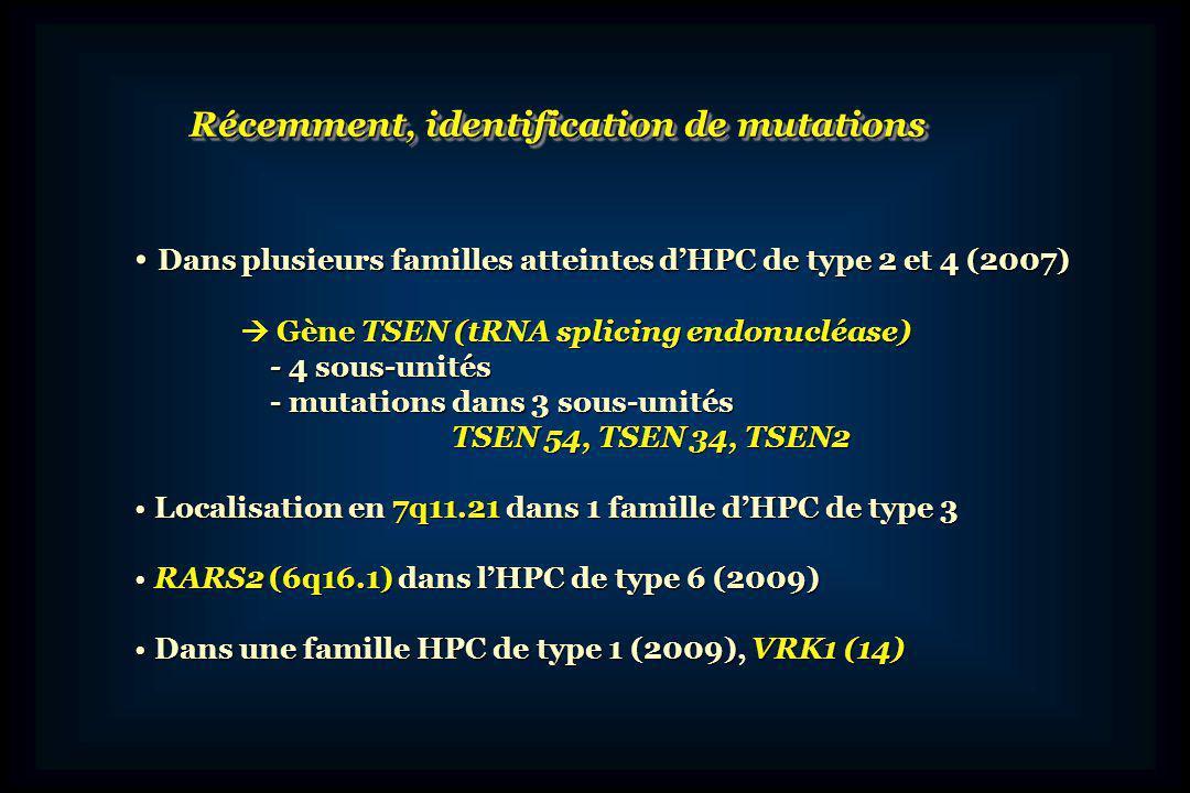 Microcéphalie et hypoplasie pontocérébelleuse Liée à lX Mutations du gène CASK Microcéphalie et hypoplasie pontocérébelleuse Liée à lX Mutations du gène CASK