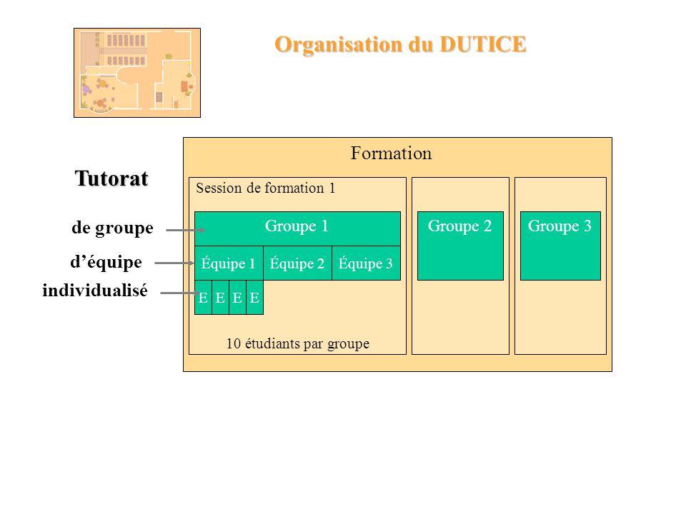 1 année de formation - 18 cours - un projet personnel DUTICE : une formation universitaire à distance Diplôme Universitaire en Technologies de lInform