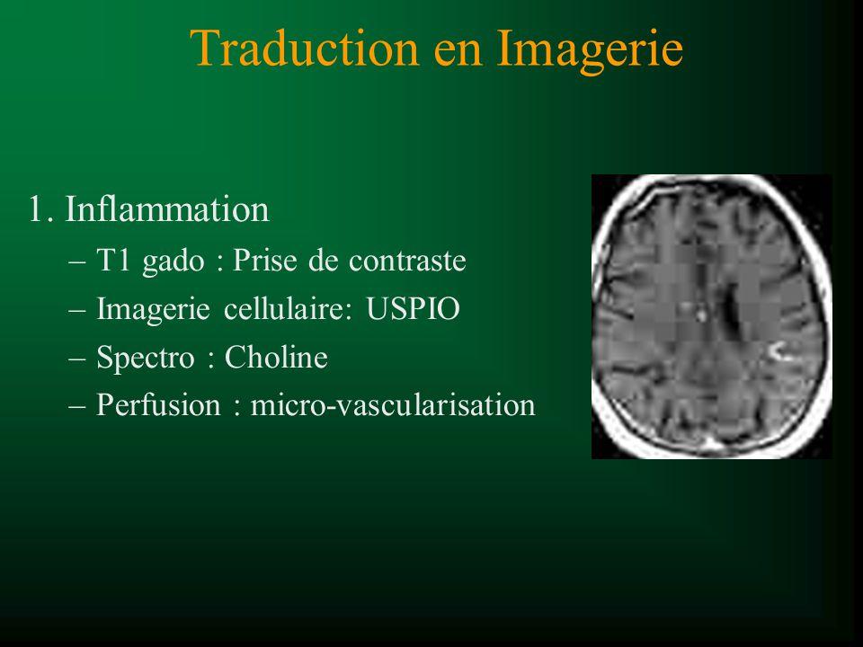 Traduction en Imagerie 1. Inflammation –T1 gado : Prise de contraste –Imagerie cellulaire: USPIO –Spectro : Choline –Perfusion : micro-vascularisation