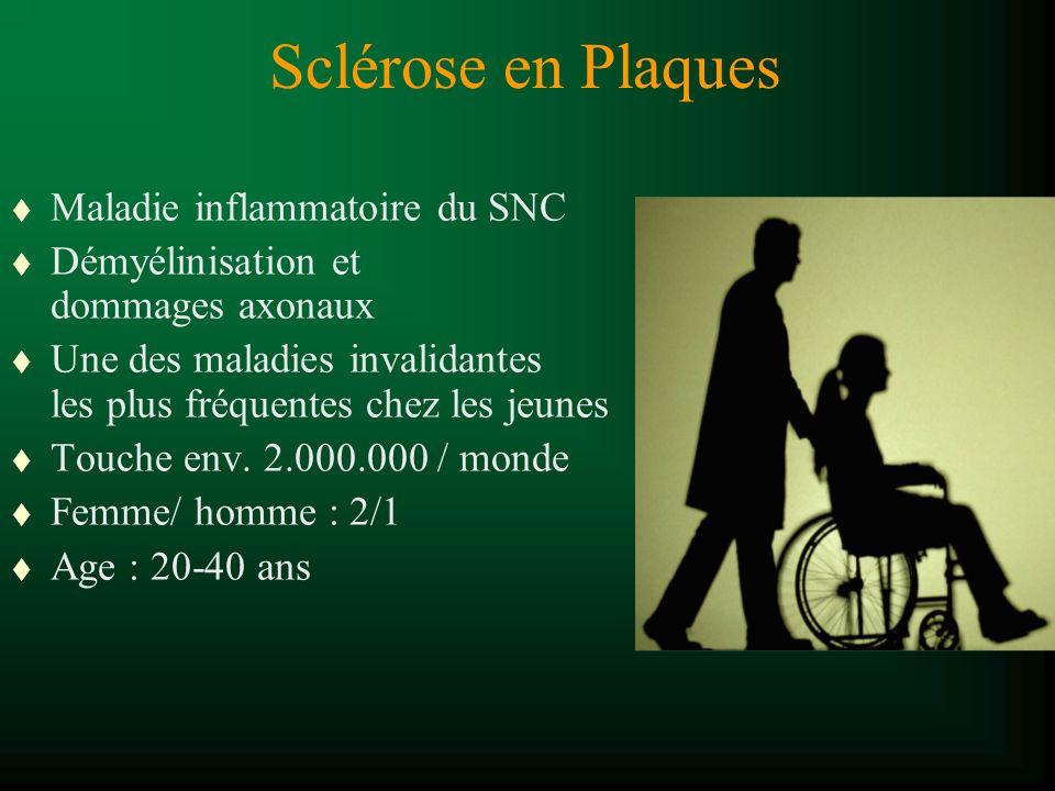 Sclérose en Plaques t Maladie inflammatoire du SNC t Démyélinisation et dommages axonaux t Une des maladies invalidantes les plus fréquentes chez les