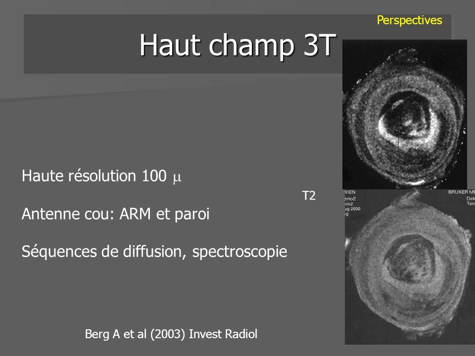 Haut champ 3T Haute résolution 100 Antenne cou: ARM et paroi Séquences de diffusion, spectroscopie Perspectives Berg A et al (2003) Invest Radiol T2