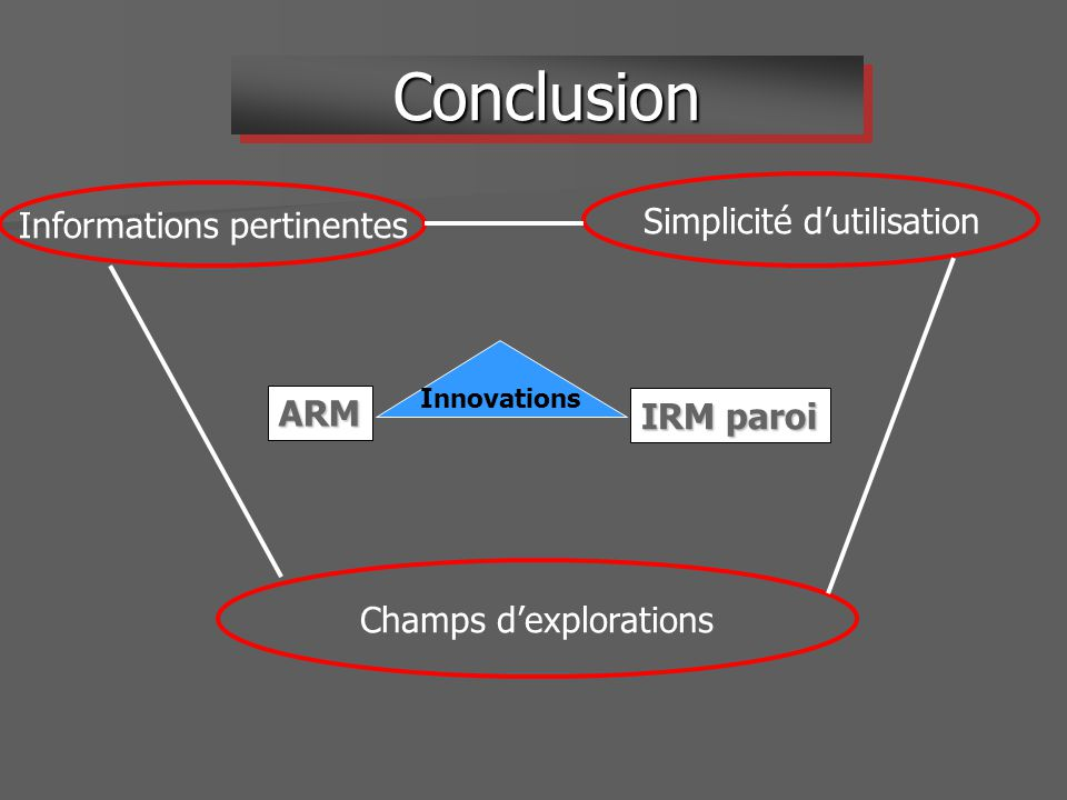 IRM paroi ARM Informations pertinentes Simplicité dutilisation Champs dexplorations Innovations ConclusionConclusion