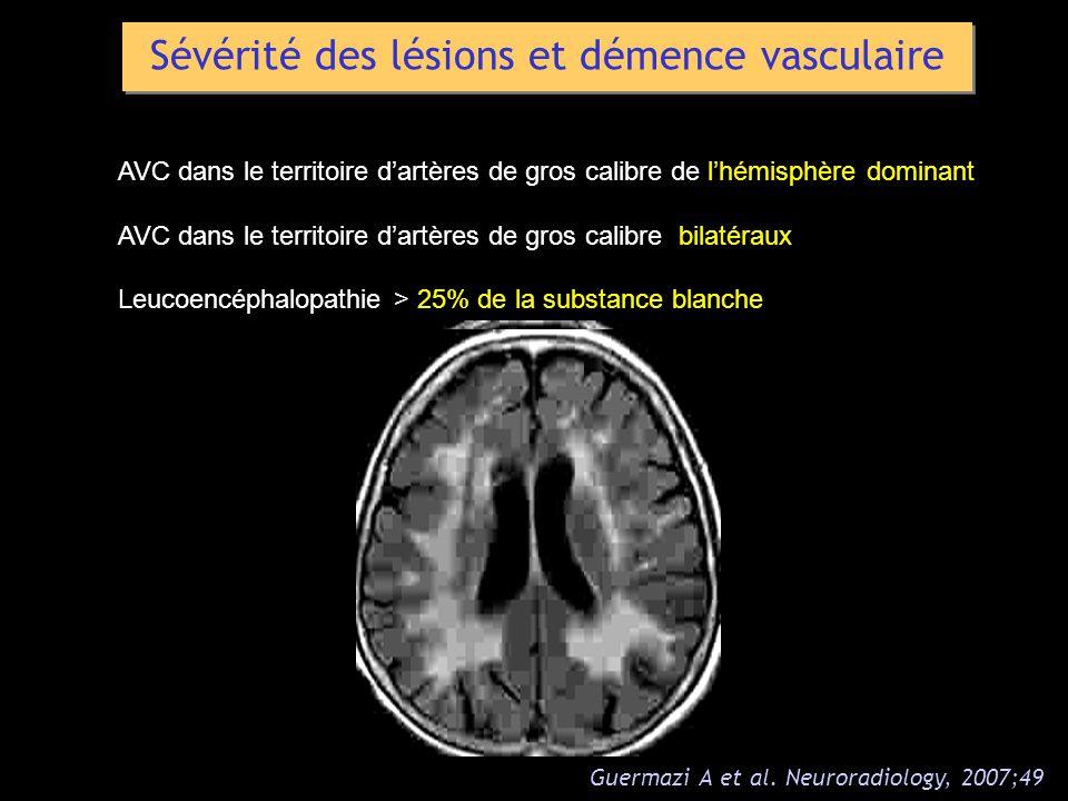 Sévérité des lésions et démence vasculaire AVC dans le territoire dartères de gros calibre de lhémisphère dominant AVC dans le territoire dartères de