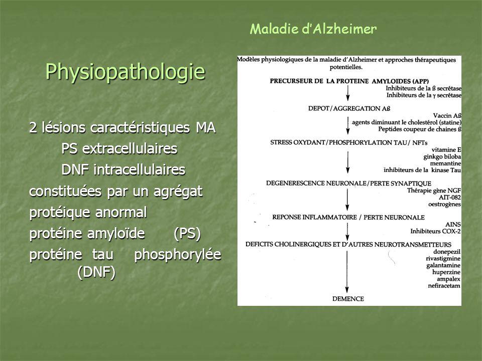 Physiopathologie 2 lésions caractéristiques MA PS extracellulaires DNF intracellulaires constituées par un agrégat protéique anormal protéine amyloïde
