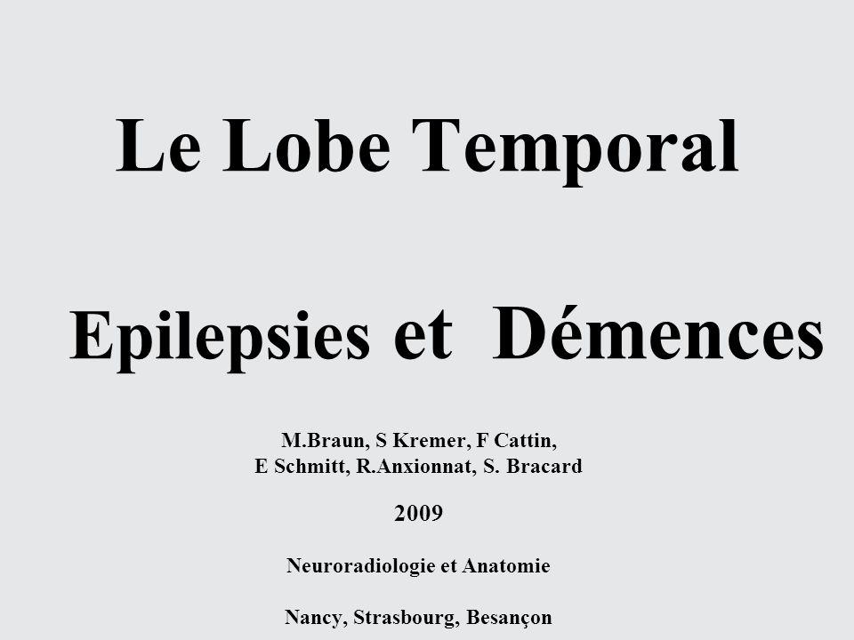 Le Lobe Temporal Epilepsies et Démences M.Braun, S Kremer, F Cattin, E Schmitt, R.Anxionnat, S. Bracard 2009 Neuroradiologie et Anatomie Nancy, Strasb