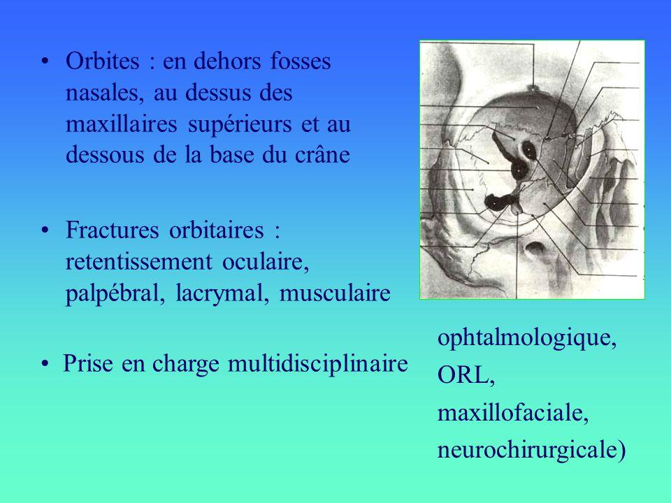 Orbites : en dehors fosses nasales, au dessus des maxillaires supérieurs et au dessous de la base du crâne Fractures orbitaires : retentissement ocula