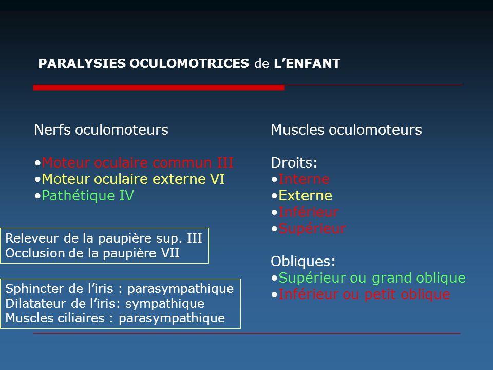 Nerfs oculomoteurs Moteur oculaire commun III Moteur oculaire externe VI Pathétique IV Muscles oculomoteurs Droits: Interne Externe Inférieur Supérieu