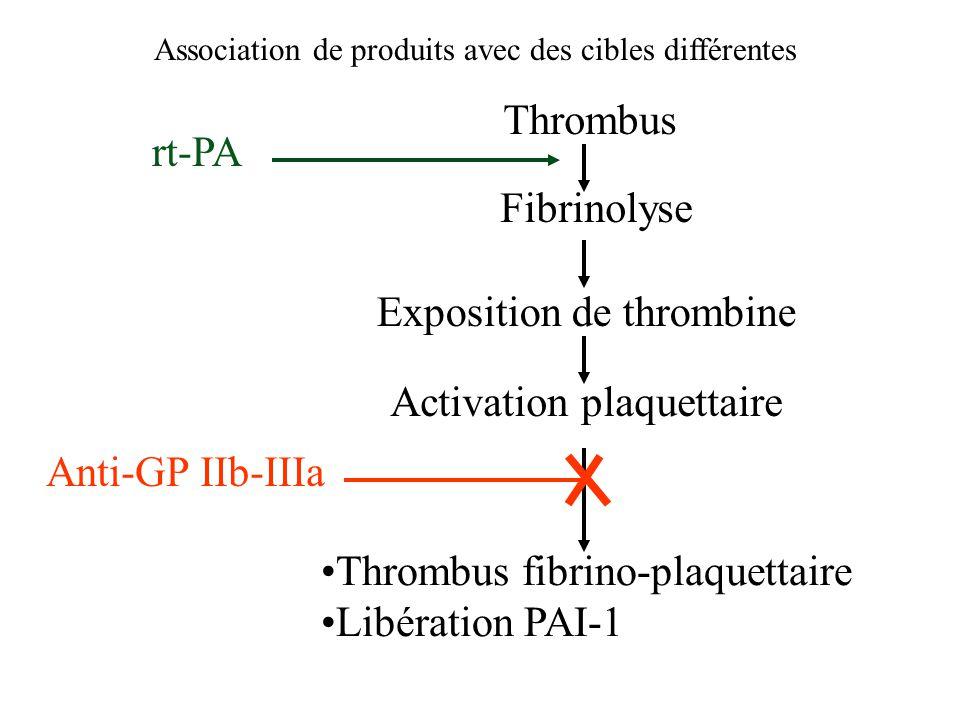 Thrombus Exposition de thrombine Activation plaquettaire rt-PA Fibrinolyse Thrombus fibrino-plaquettaire Libération PAI-1 Anti-GP IIb-IIIa Association de produits avec des cibles différentes
