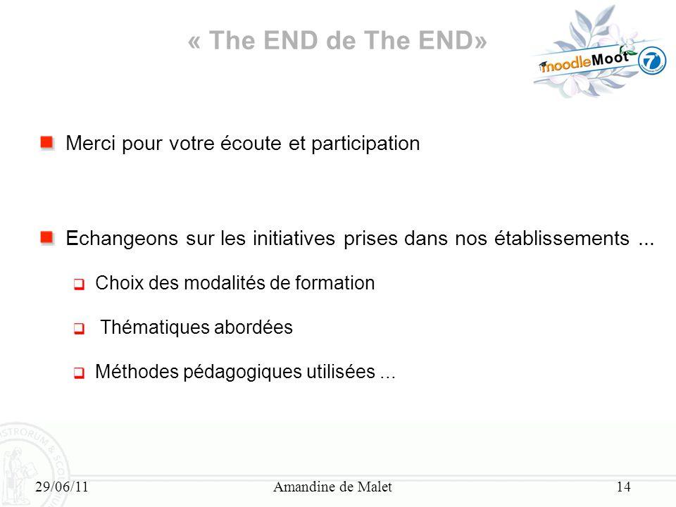 29/06/11Amandine de Malet14 « The END de The END» Merci pour votre écoute et participation Echangeons sur les initiatives prises dans nos établissemen