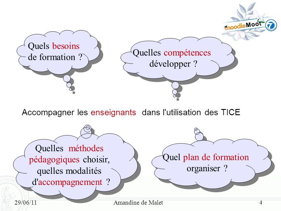 29/06/11Amandine de Malet4 Accompagner les enseignants dans l'utilisation des TICE Quels besoins de formation ? Quels besoins de formation ? Quelles c
