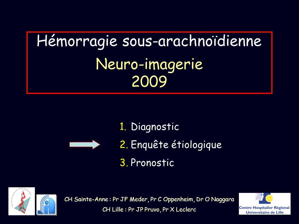 Hémorragie sous-arachnoïdienne Neuro-imagerie 2009 1.Diagnostic 2.Enquête étiologique 3.Pronostic CH Sainte-Anne : Pr JF Meder, Pr C Oppenheim, Dr O N