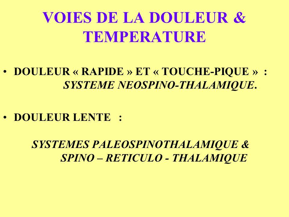 VOIES DE LA DOULEUR & TEMPERATURE DOULEUR « RAPIDE » ET « TOUCHE-PIQUE » : SYSTEME NEOSPINO-THALAMIQUE. DOULEUR LENTE : SYSTEMES PALEOSPINOTHALAMIQUE