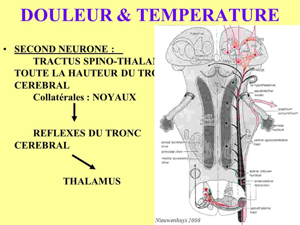SECOND NEURONE : TRACTUS SPINO-THALAMIC TOUTE LA HAUTEUR DU TRONC CEREBRAL Collatérales : NOYAUX REFLEXES DU TRONC CEREBRAL THALAMUS DOULEUR & TEMPERA