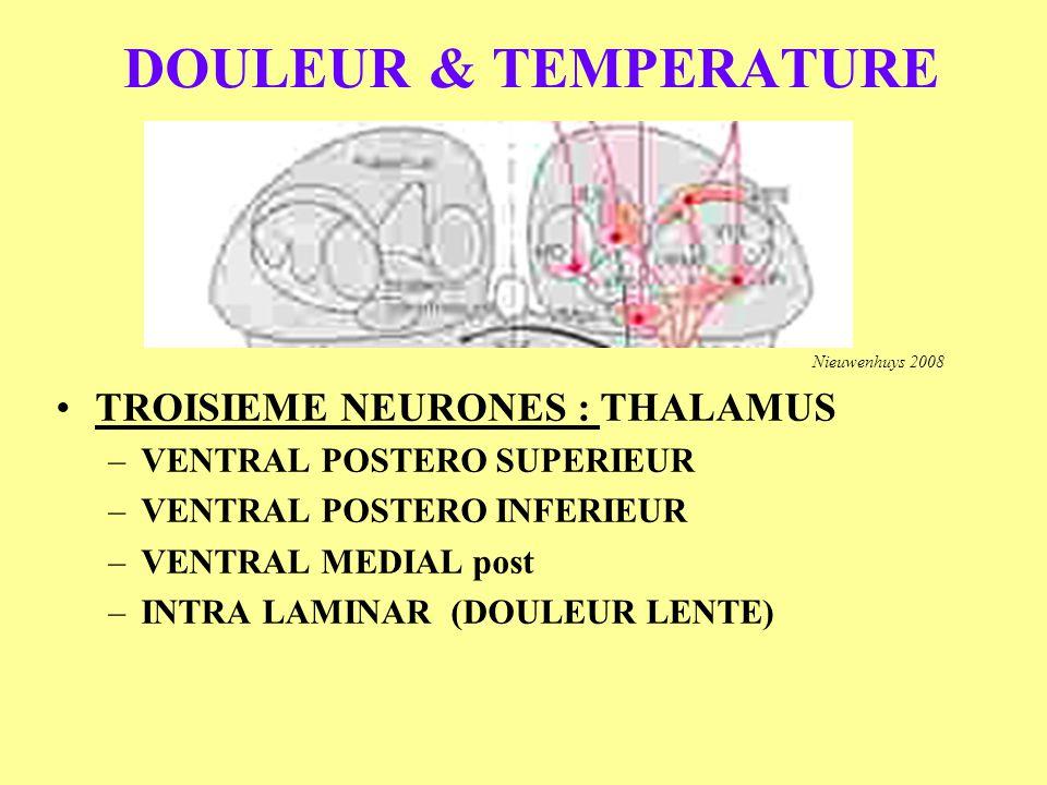 DOULEUR & TEMPERATURE TROISIEME NEURONES : THALAMUS –VENTRAL POSTERO SUPERIEUR –VENTRAL POSTERO INFERIEUR –VENTRAL MEDIAL post –INTRA LAMINAR (DOULEUR