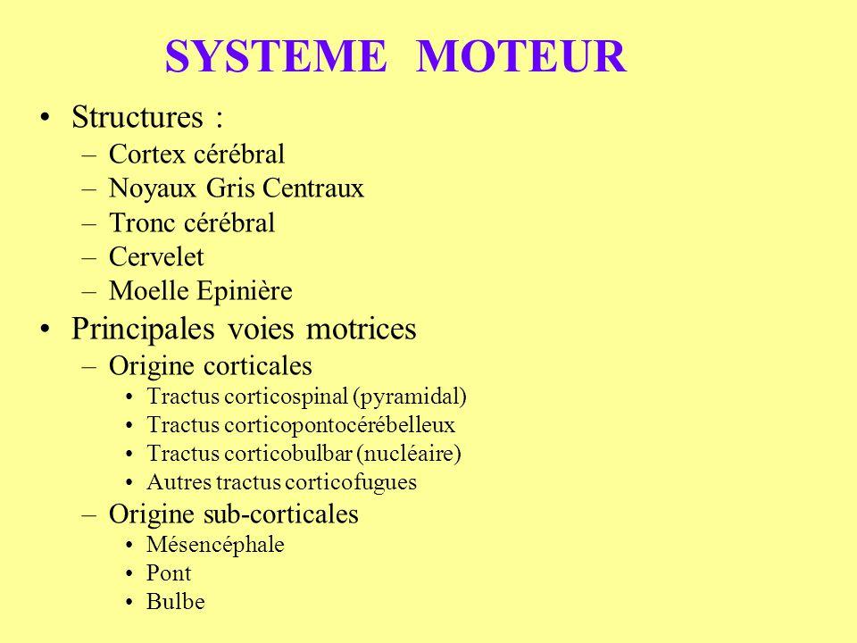 SYSTEME MOTEUR Structures : –Cortex cérébral –Noyaux Gris Centraux –Tronc cérébral –Cervelet –Moelle Epinière Principales voies motrices –Origine cort