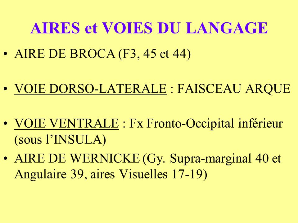 AIRES et VOIES DU LANGAGE AIRE DE BROCA (F3, 45 et 44) VOIE DORSO-LATERALE : FAISCEAU ARQUE VOIE VENTRALE : Fx Fronto-Occipital inférieur (sous lINSUL