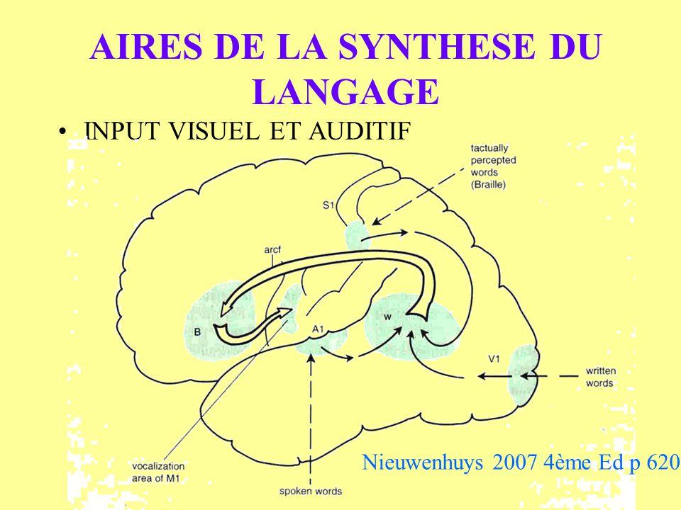 AIRES DE LA SYNTHESE DU LANGAGE INPUT VISUEL ET AUDITIF Nieuwenhuys 2007 4ème Ed p 620