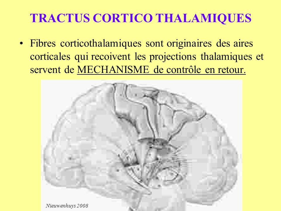 TRACTUS CORTICO THALAMIQUES Fibres corticothalamiques sont originaires des aires corticales qui recoivent les projections thalamiques et servent de ME